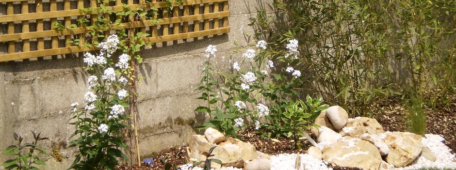 amanagement jardin scene vegetale