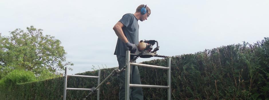 entretien jardin Taille de haies