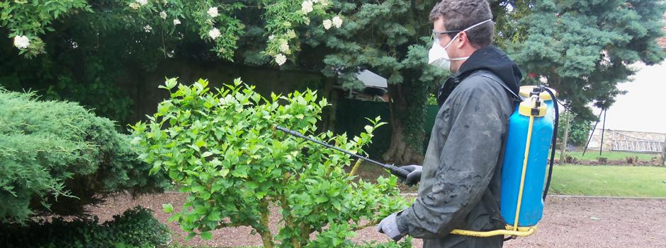 Entretien de jardin jp charron entreprise paysagiste for Contrat entretien jardin